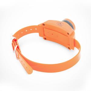 Collare di localizzazione SportDog Beeper SportTrainer® Add-A-Beeper